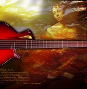 inserat-guitarconnoisseur-FEB-2017-dream-bass.jpg